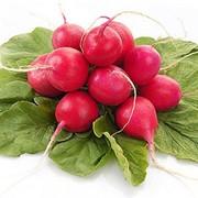 Семена редис Розово-красный с белым кончиком импортный 1 кг