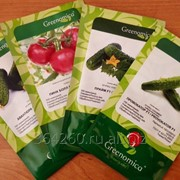 Семена овощных культур фото