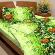 Ткань постельная Бязь 100 гр/м2 150 см Набивная Тропикана 3665-2/S047 TDT фото
