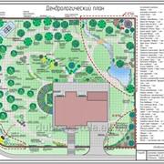 Проектирование дизайна Вашего сада, Ландшафтный дизайн фото