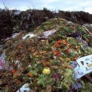 Утилизация пищевых отходов в Казахстане, Утилизация пищевых отходов, Утилизация отходов МВ Арна, ТОО МВ Арна фото