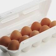 Контейнер для яиц фото