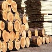 Пиломатериалы из хвойных пород дерева