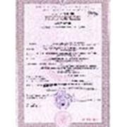 Экспортная декларация казахстан, Kazakhstan Export Declaration фото