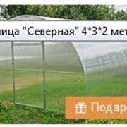 фото предложения ID 16324128