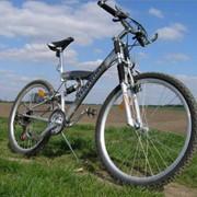 Велосипедные туры фото
