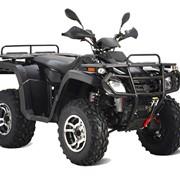 Квадроцикл Stels ATV 300 B фото
