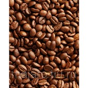 Кофе в зернах. Maragogype Columbia 1 кг