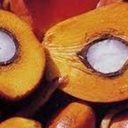 Пальмоядровое масло рафинированное фото