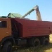 Аренда и услуги Грузовик КамАЗ-55111 15т. фото