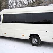 Аренда микроавтобуса Mercedes Sprinter 313 фото