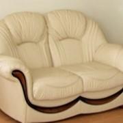 Двухместный кожаный диван Дельта фото