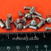 Заклепка стальная ГОСТ 10299-80 фото