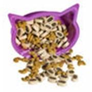 Кошачий корм фото