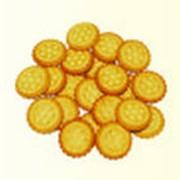 Крекер соленый фото