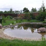 Строительство водоемов, устройство прудов фото