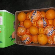 Апельсин свежий фото