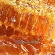 Мед с полей Ново-Шульбинского района, ВКО, Казахстан фото