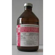Вакцина поливалентная ВГНКИ против лептоспироза свиней Армавир