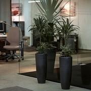 Дизайн интерьера офисов фото