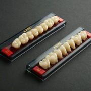 Трёхслойные акриловые зубы фото