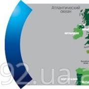 Зеленая Карта? Международное ОСАГО фото