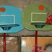 Кольца баскетбольные детские фото