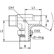 Штуцер ввертный регулируемый FR / T- образный, уплотнение тип G Резьба BSP фото