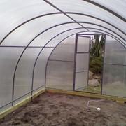 Каркасные укрытия для зимующих растений фото