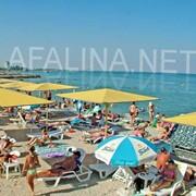 Пляжи возле гостиницы Афалина (Феодосия) фото
