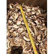 ПРОДАЮ ОПТОМ Белые сушеные грибы фото