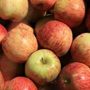 Яблоки Jona Gold фото