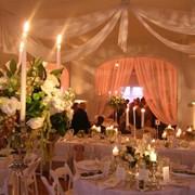 Полный комплекс свадебных услуг фото