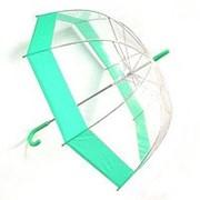 Зонт прозрачный купол зеленый фото