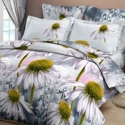 Ткань постельная Бязь 125 гр/м2 220 см Набивная Коллекционные ромашки 4122/S030 TDT фото