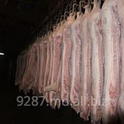 Свинина полутуши в Молдове фото