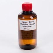 Цветочная вода иссопа - Гидролат иссопа, гидролат иссопа купить по цене производителя фото
