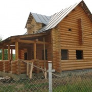 Огнебиозащитный состав для древесины Асфор экстра фото