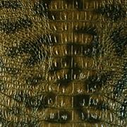 Кожзаменитель имитирующий кожу аллигатора - ALLIGATOR цена фото