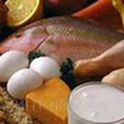 Бесплатная доставка продуктов питания фото