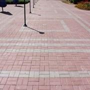 Мощение дорожек тротуарной плиткой цена работы фото