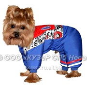 Комбинезон для собаки Патриот фото