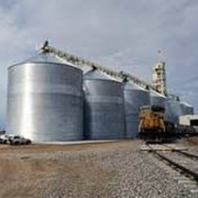 Зернохранилище кукурузы фото