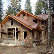 Изготовление эксклюзивного дома,бани,усадьбы из бревна кело фото