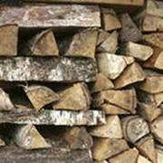 Березовые дрова фото