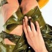 Обертывание водорослевое парафанго фото