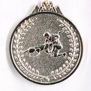 Медаль борьба - серебро фото