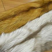 Мех лисы (лиса) фото