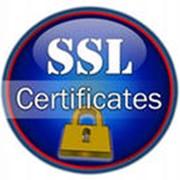 Сертификаты SSL фото