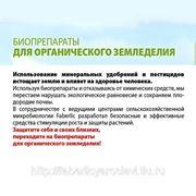 Микробиологическое удобрение сухая форма - Бисолбифит-РОСТ